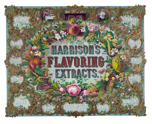 Fancy Floral Vintage Frame (2)