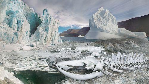 fantazija,kraštovaizdis,fantazijos kraštovaizdis,ledas,balta,šaltas,sušaldyta