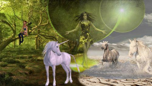 fantasy unicorn elf