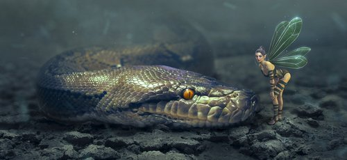 fantasy  snake  elf