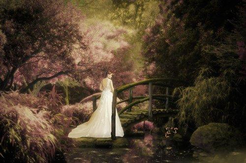 fantasy  dreams  garden