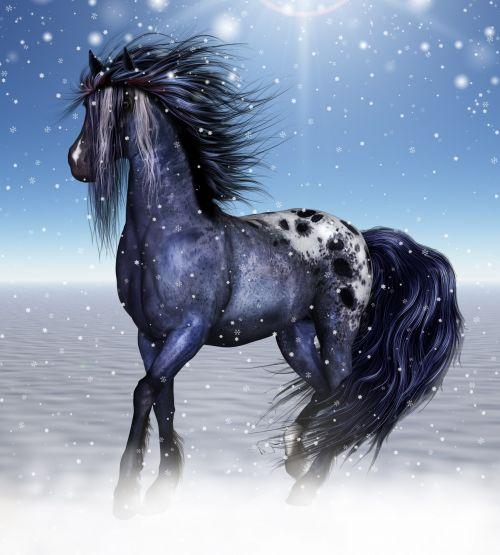 Fantasy Equine Art, Winter Horse