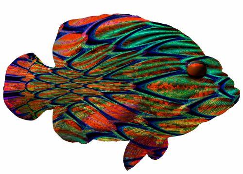 Fantasy Op-Art Hind Fish
