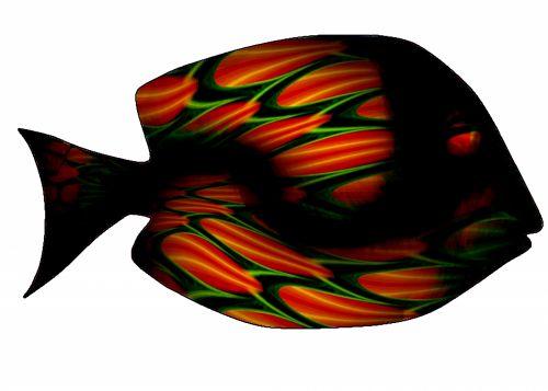 Fantasy Op-Art Tang Fish