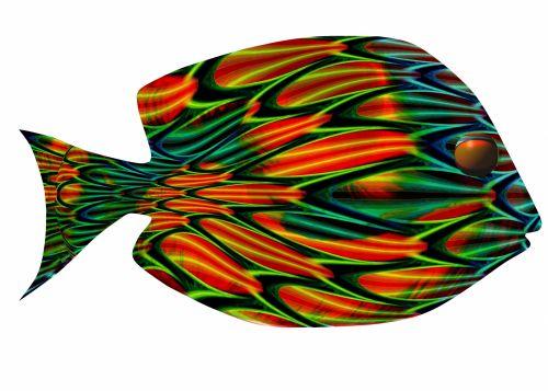 Fantasy Tang Op-Art Fish