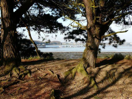 fareham creek portchester wicor harbour view
