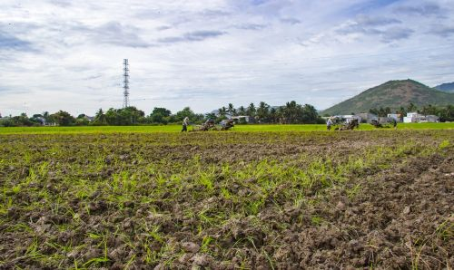 farm paste plough