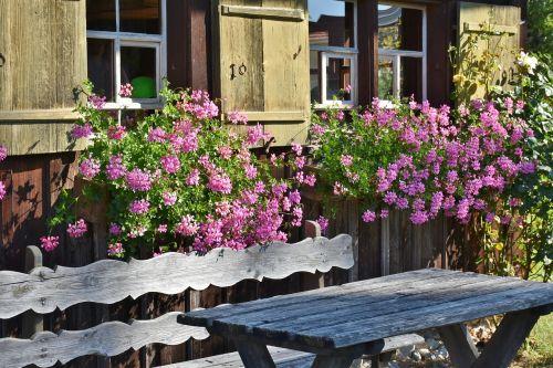 farm floral decorations window