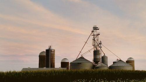 farm dairy dairy farm