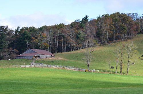 farm landscape field