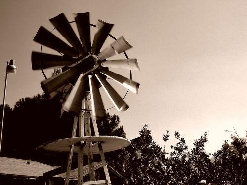 farm farming windy
