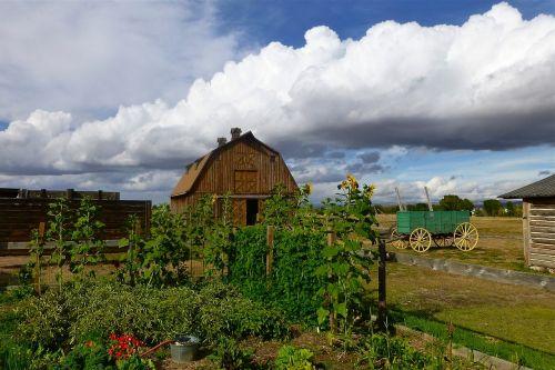 farm survival barn