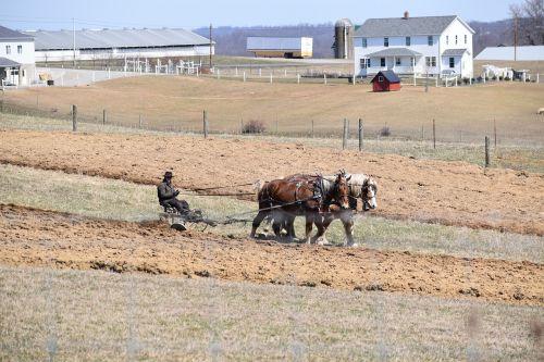 farm agriculture field