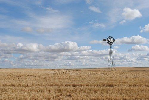 farm  west  windmill