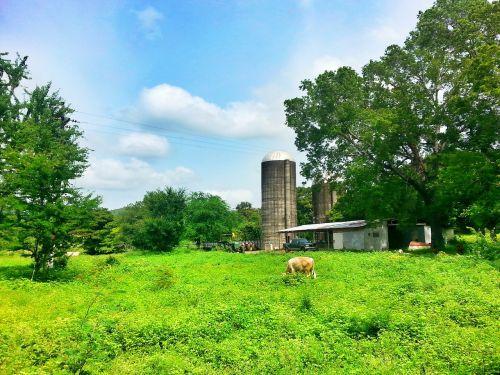 farm granja puerto rico