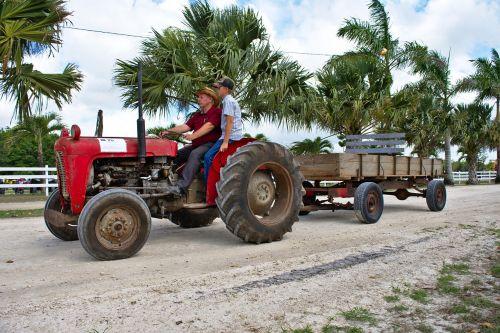farm equipment antique tractor