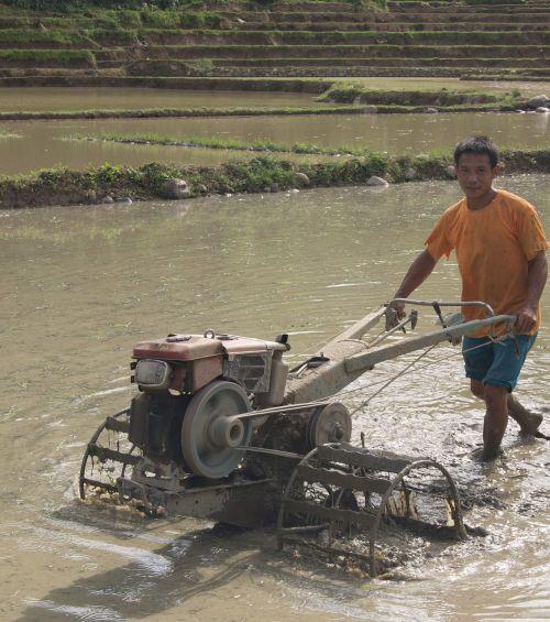 farmer laos agriculture