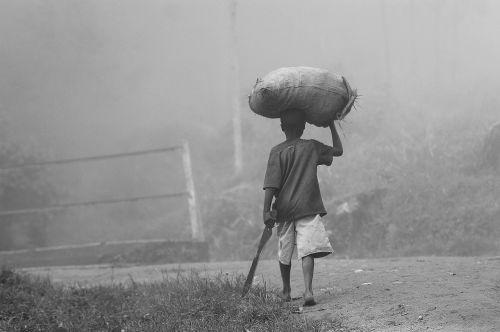 farmer africa farmland