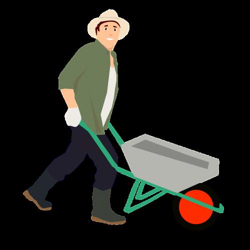 farmer wheelbarrow vegetable