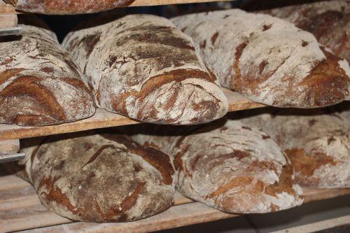 farmer's bread bread loaf of bread