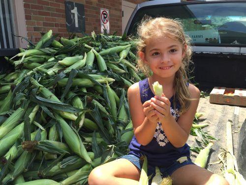 farmers market corn produce