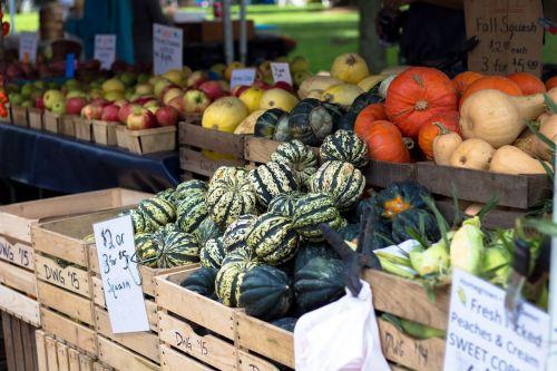 farmers market squash pr