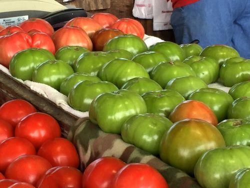 farmers market tomatoes garden