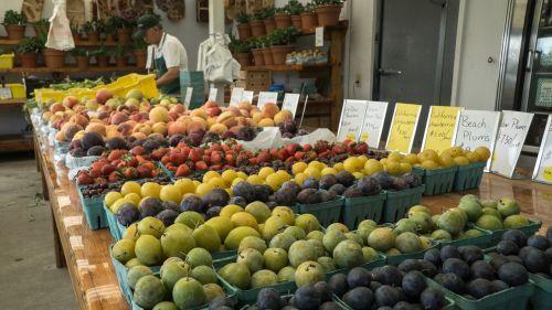 farmers market fruit vegetable