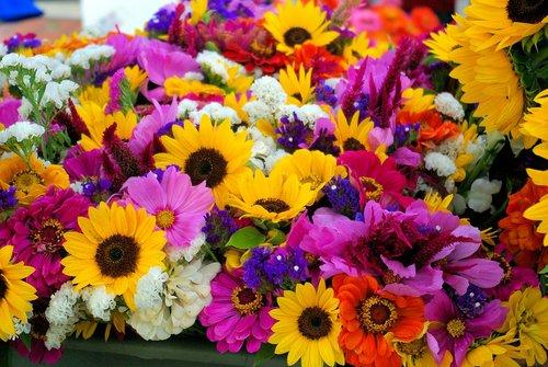 farmers market mixed flowers  sunflowers  flowers