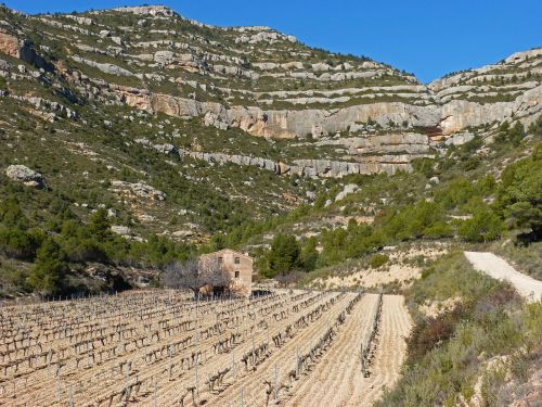 farmhouse vineyard mountain vineyard