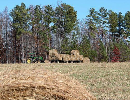 farming making hay hay wagon
