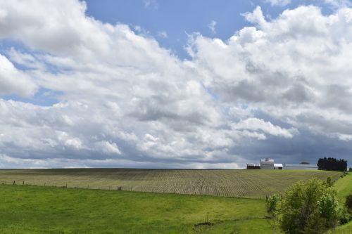 farmland american farmer agriculture