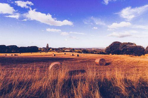 farmland hay bales hay