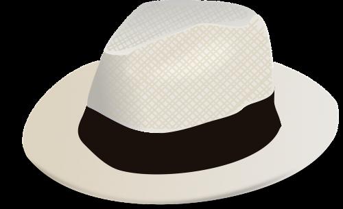 fashion hat panama hat