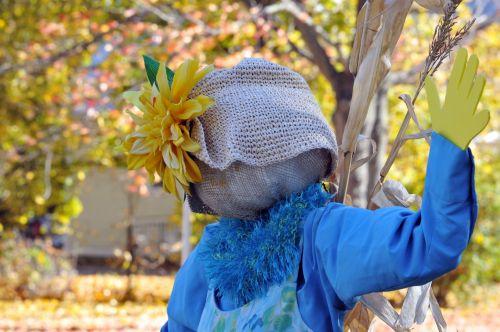 Fashionable Scarecrow