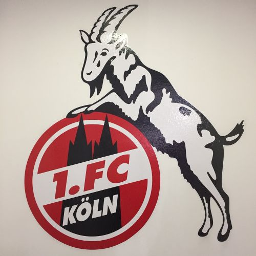 fc köln bundesliga logo
