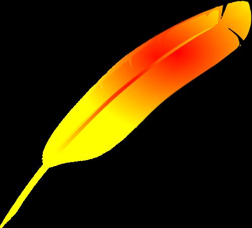 feather yellow orange