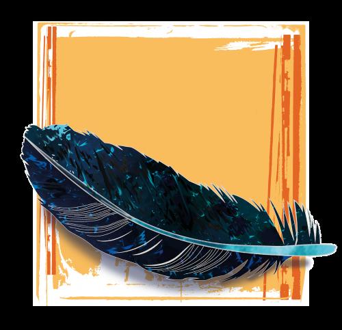 feather blue black