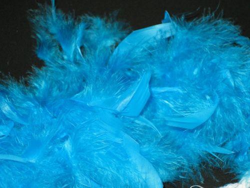 feather boa boa blue