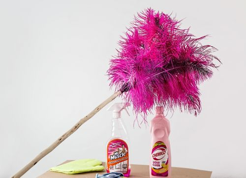 feather duster cleaning housework