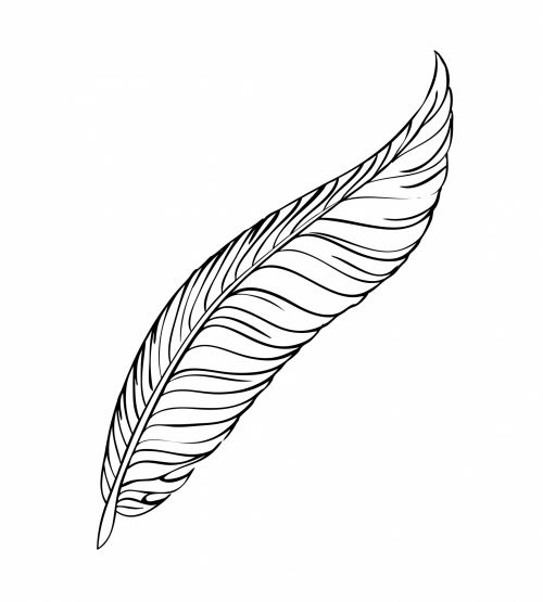 Feather Line Art