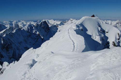 features the features of the face in the winter scratches tatras