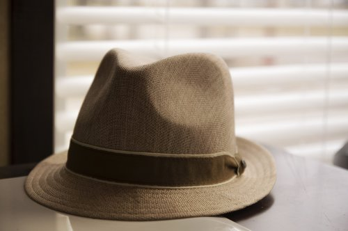 fedora  hat  fashion
