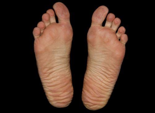 feet foot sole