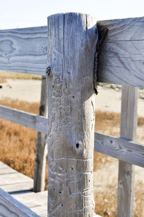 fence railing wood