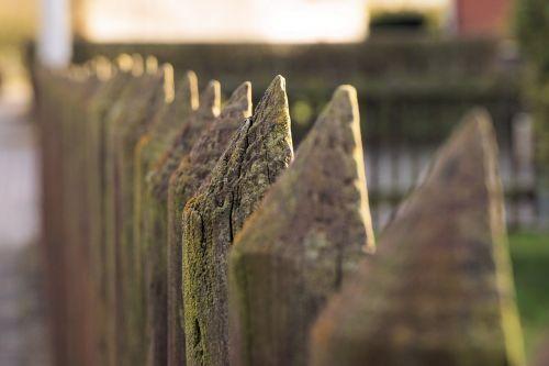 fence wood wood fence