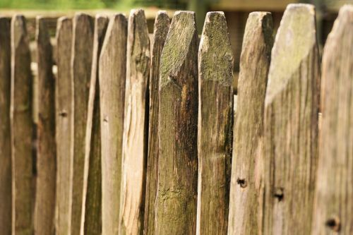 fence wood battens