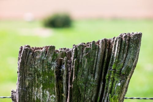 fence wire pasture