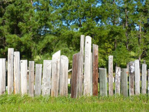 fence telephone poles wooden fence