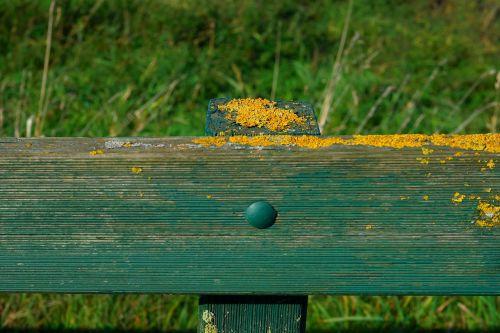 fence pile moss